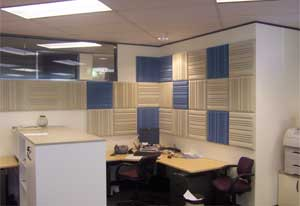 Acoustic Treatment of Office Space